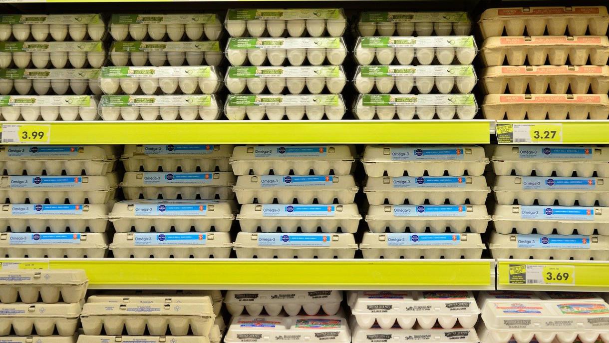 schmecken eier wirklich unterschiedlich
