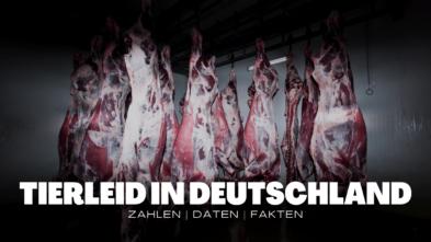 Massentierhaltung in Deutschland